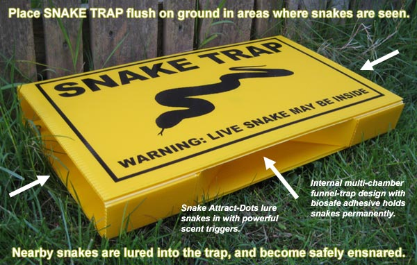 Snake Prevention How To Keep Away Snakes